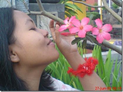 bunga cantiku 02